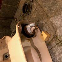 焼津市道原 洋式トイレ脱着作業